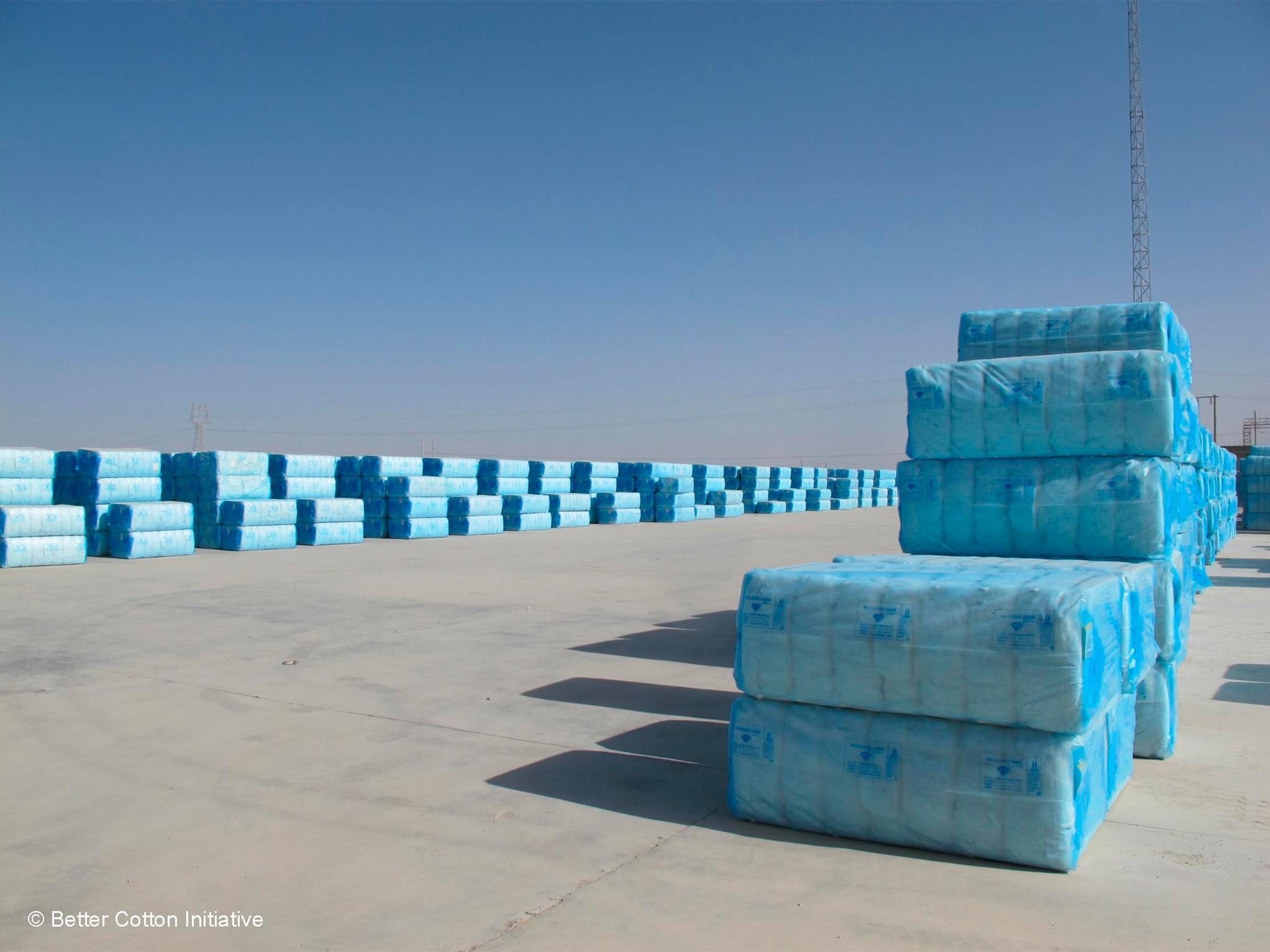 BCI Image 5 bolsas azules