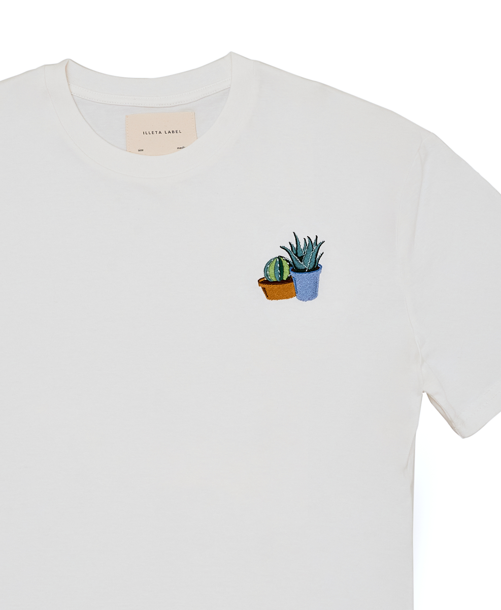 /c/a/cactusfrontal.jpg